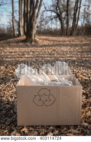 Young Volunteers Cleaning Area In Wood,with Keep Plastic Bottle At Public Park. People And Ecology.