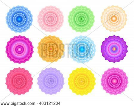 Set Of 12 Colorful Double Flowers, Top View. Geometric Symmetrical Inflorescences On A White Backgro