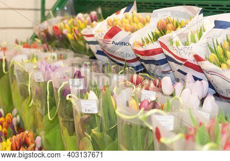 Amsterdam, Netherlands - 16 November, 2013: Tulip Flower Shop At Schiphol Airport In Amsterdam. Sale