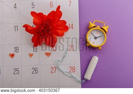 Females Menstrual Cycle Concept. Menstrual Calendar With Tampon, Alarm Clock And Red Flower On A Lil