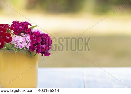 Beautiful Phlox Flowers In A Yellow Glass On A Table In A Summer Garden Close Up
