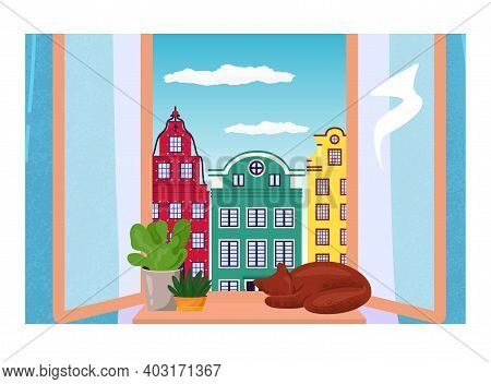 Domestic Cat Relax Sleep On Windowsill With Pot Flower, European Urban Landscape, Cozy Home Room Fla