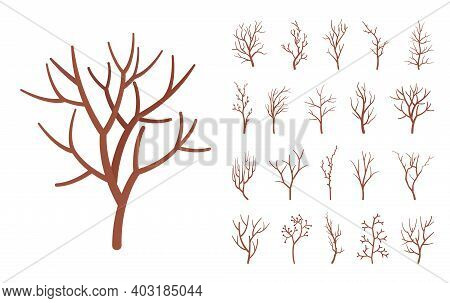 Dry Tree Brown Branches Set, Natural Dried Decorative Sticks. Organic Atmosphere, Old Twig Home Deco