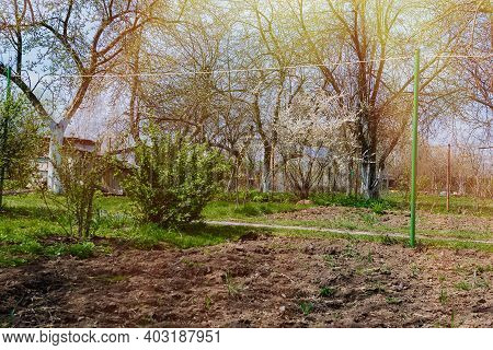 Garden And Vegetable Garden.spring Planting .eco-friendly Cultivation Of Vegetables And Fruits.zero