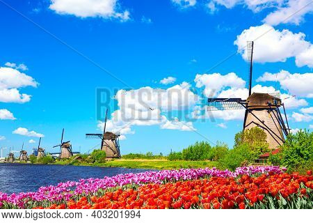 Beautiful Colorful Spring Landscape In Netherlands, Europe. Famous Windmills In Kinderdijk Village W