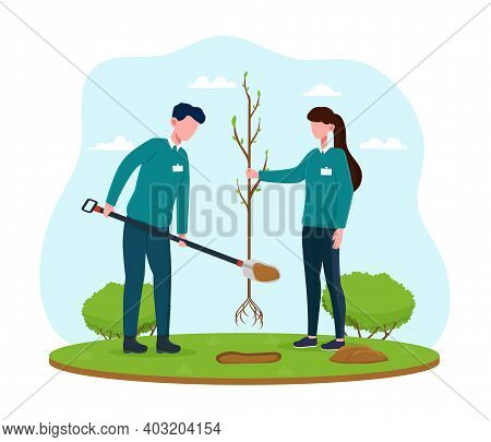 Male And Female Volunteers Planting Green Trees. Two Volunteers Planting Tree In City Park. Concept