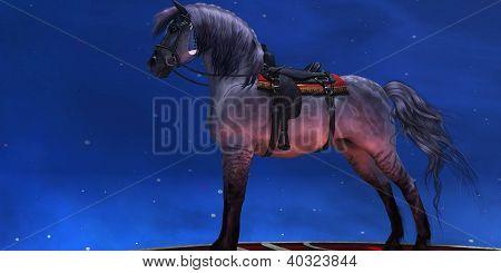 Kiger Silver Horse