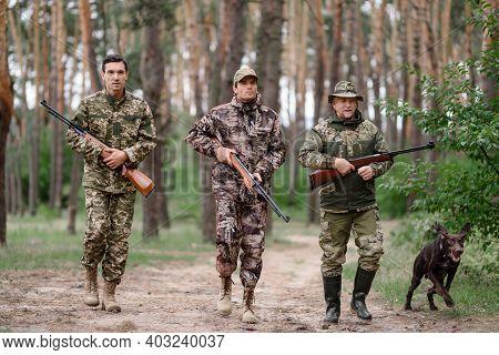 Chasing Hunt In Forest Excited Men Pointer Dog.