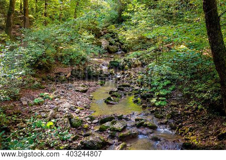 Small Streams That Are The Source Of The River.a Small Waterfall With Moss And Ferns Is Located Alon