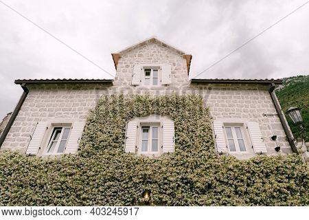 House With Windows And Open Shutters With Jasmine Curling Up The Wall.