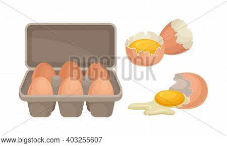 Cracked Eggshell With Raw Egg And Egg Package As Food Vector Set