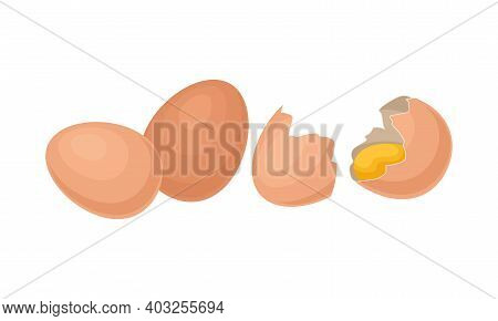 Whole And Cracked Eggshell With Raw Egg As Food Vector Set