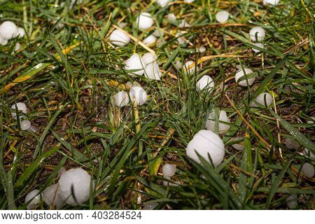 Large Grains Of Hail On A Green Background. Background, Texture. After Heavy Storm With Hail On The