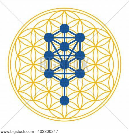 Tree Of Life Symbol Derived From The Tree Of Life. Diagram, Used In Mystical Traditions Such As Herm