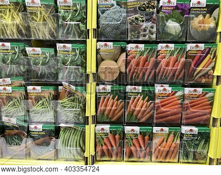Forest Lake, Minnesota - January 14, 2021: Burpee Brand Vegetable Garden Seeds On Sale At A Menards