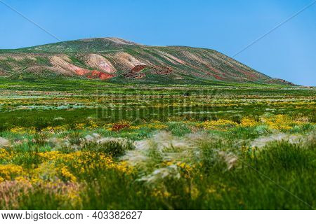 Unusual Landscape. Mountain Big Bogdo In The Astrakhan Region, Russia. Sacred Place For Practicing B