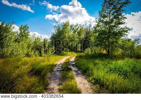 Summer Landscape: A Dirt Road In A Green Field And A Birch Grove Against A Lake And A Blue Cloudy Sk