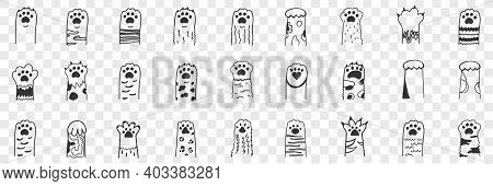 Animal Paws Doodle Set. Collection Of Hand Drawn Funny Cute Animal Paws With Claws With Various Anim