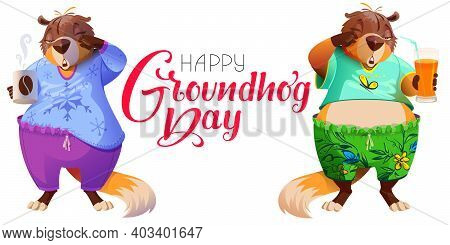 Happy Groundhog Day Greeting Text Postcard And Two Marmots. Cute Sleepy Groundhog Predicts Winter Or