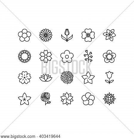 Flowers Line Icon Set. Beautiful Garden Plants - Tulip, Chamomile, Sunflower, Rose, Carnation. Icons