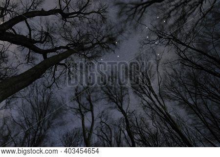 Leo Star Constellation, Night Sky, Cluster Of Stars, Deep Space,lion Constellation