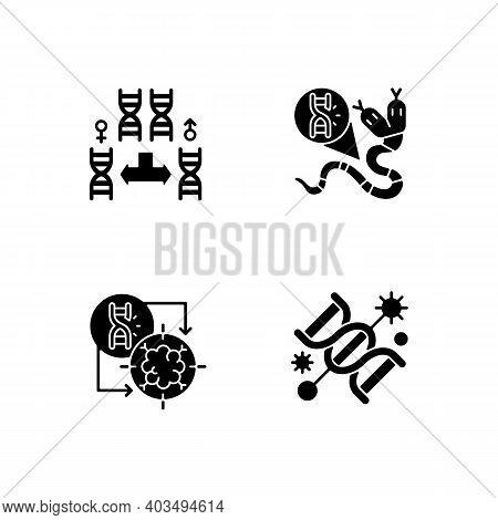 Dna Manipulation Black Glyph Icons Set On White Space. Chromosome Division. Genetic Mutation. Gene S