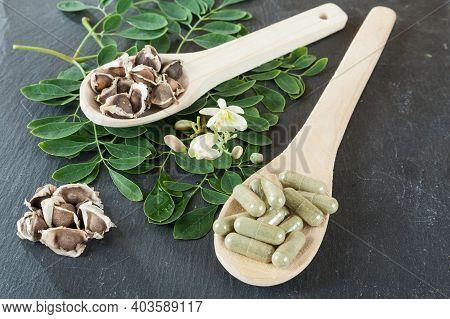 The Tree Of Life-moringa Oleifera Medicinal Plant