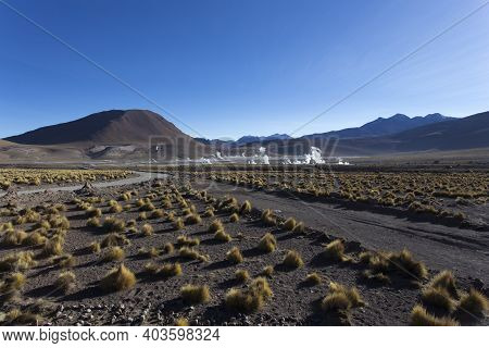Landscape At El Tatio, Geyser View