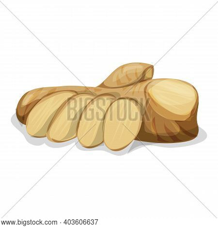 Fresh Ginger Root Icon. Cartoon Of Fresh Ginger Root Vector Icon For Web Design Isolated On White Ba