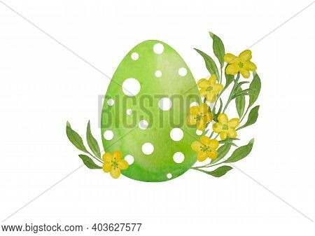 Watercolor Hand Drawn Illustration Of Green Easter Polka Dot Green Egg And Garden Ranunculus Butterc