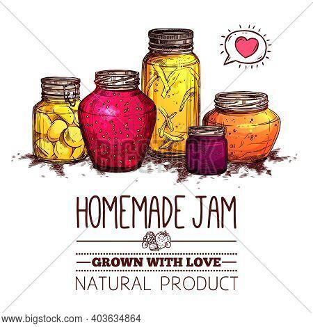 Homemade Jam Poster With Hand Drawn Glass Jars Set Vector Illustration