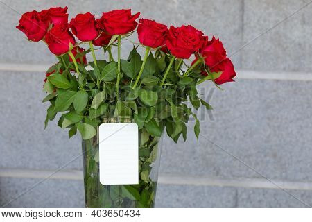 Red Rose With Petals And Blank Gift Card For Text.