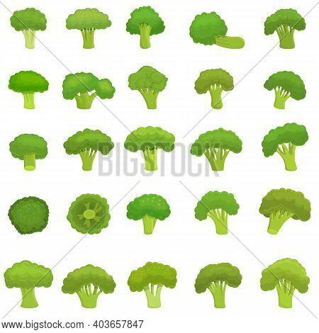 Broccoli Icons Set. Cartoon Set Of Broccoli Vector Icons For Web Design