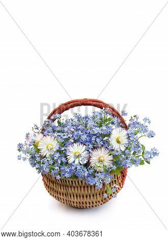 Bouquet With Marguerite And Forget-me-not In The Basket  On White Background