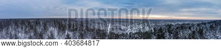 Sunset Panorama Over A Snowy Forest. Beautiful Winter Sunset.