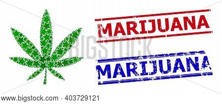 Marijuana Star Pattern And Grunge Marijuana Seal Stamps. Red And Blue Stamps With Scratched Style An