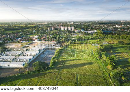 Land Plot In Aerial View. Include Landscape, Real Estate, Green Field, Crop, Agricultural Plant. Tra