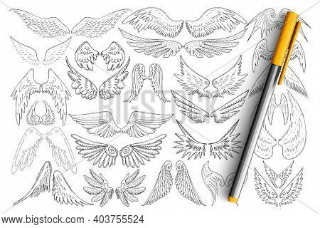 Bird Wings Patterns Doodle Set. Collection Of Hand Drawn Elegant Wings Of Different Birds In Style O