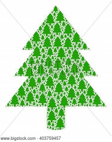Vector Fir Tree Fractal Is Designed From Random Itself Fir Tree Icons. Fractal Composition From Fir