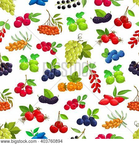 Seamless Pattern With Cartoon Berries Vector Sea Buckthorn, Black Chokeberry And Cherry. Blueberry,