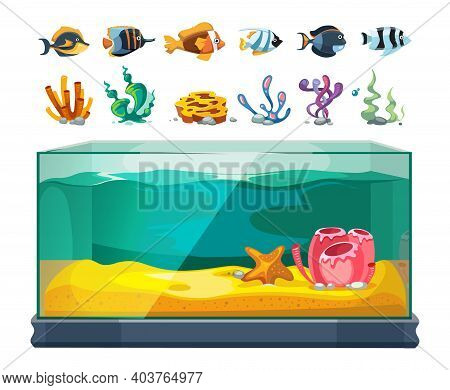 Aquarium Bundle. Exotic Fishes, Seaweeds And Corals. Cartoon Glass Water Cube, Isolated Sealife Or U