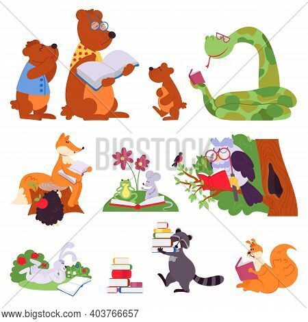 Animals Reading. Bird Animal Read Book, Cute Cartoon Forest Wild Characters. Children School Educati
