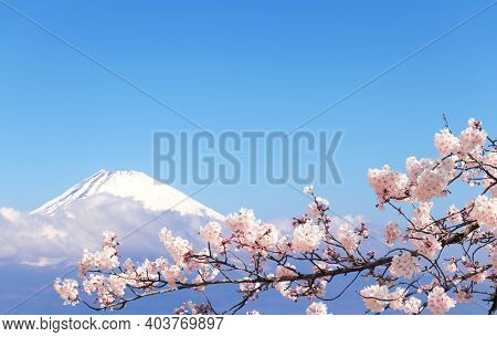 Beautiful sacred Mount Fuji (Fujiyama) in clouds on blue sky background, Japan. View from Mount Komagatake