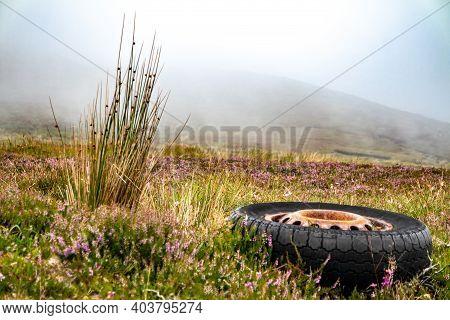 Illegally Dumped Dumped Tyre In Rural Ireland