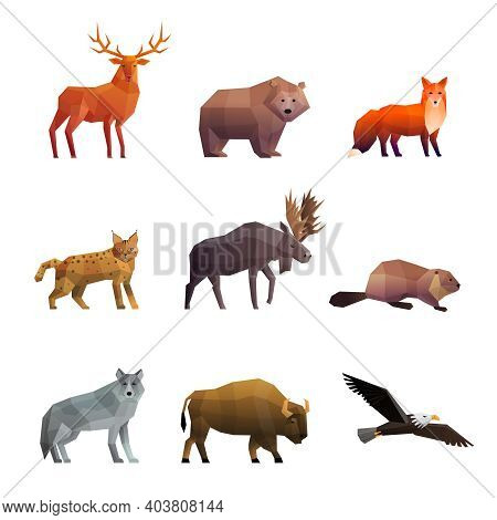 Wild Northern Animals 3d Colorful Polygonal Icons Set With Wolf Fox Bear And Eagle Isolated Vector I