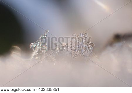 Beautiful Winter Background With Small Crystalic Snowflake