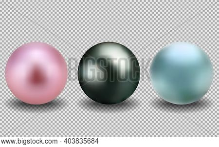 Set Of Realistic Pearls. Round Pink, Black, Blue, Formed In The Shell Of A Pearl Oyster, A Gem. Vect