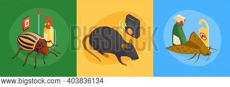 Isometric Pest Control Design Concept With Square Compositions Set Of Vermins And Destroying Product