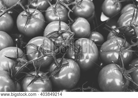 Vintage Black And White Shot Of A Pile Of Tomatoes