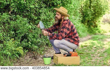 Natural Soil. Spring Garden Concept. Gardeners Hands Plant Flowers In Backyard. Gardener Planting Fl